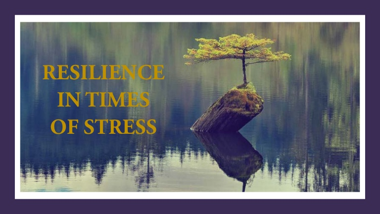 Cultivating Resilience – Train Your Mind to Bounce Back